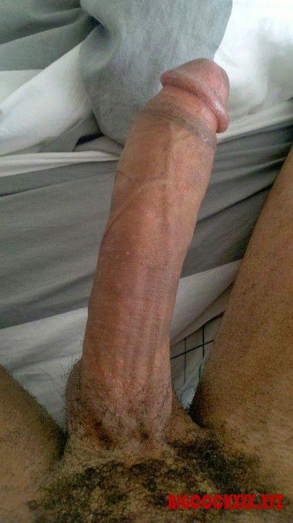 Секс фото длинные члены 87563 фотография